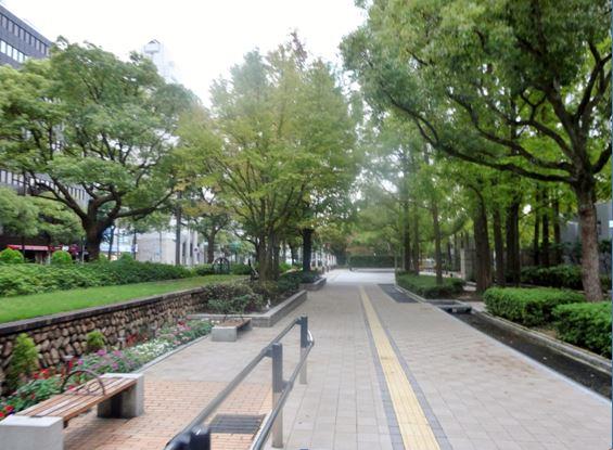 神戸ライズ⑨.JPG